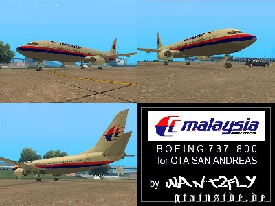 Malaysia Airlines B737 800