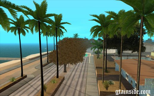 More Trees on Los Santos Beach Road