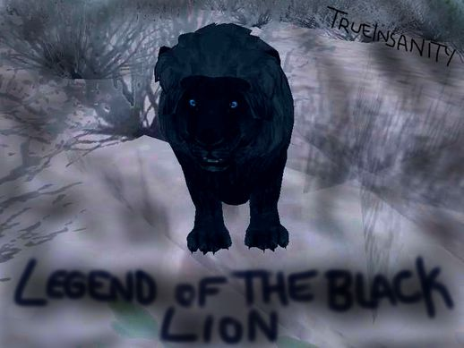 Legend of the Black Lion