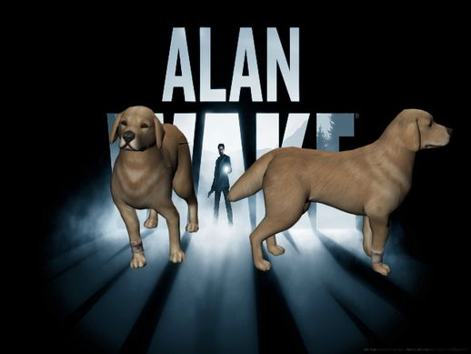 Alan Wake Dog Golden Retriever