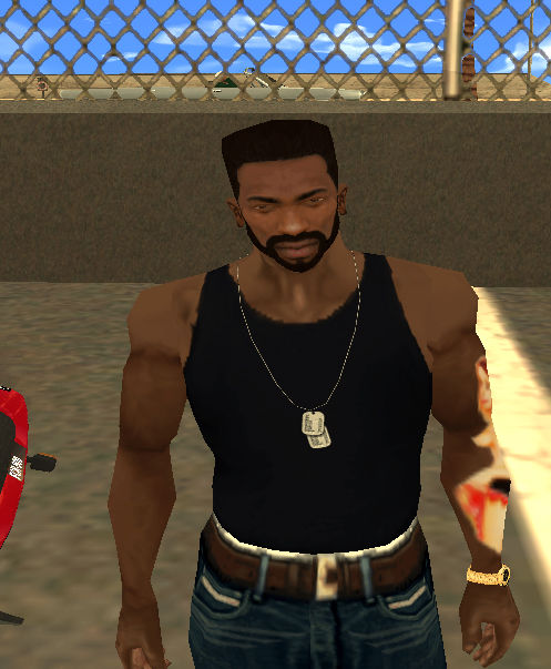 Gta San Andreas Elvishair Amp Beard Mod Gtainside Com