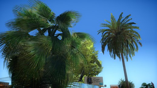 GTA V Vegetation [W.I.P] - Palms