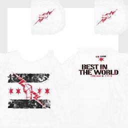 Gta San Andreas Cm Punk 2011 Best In The World T Shirt Mod