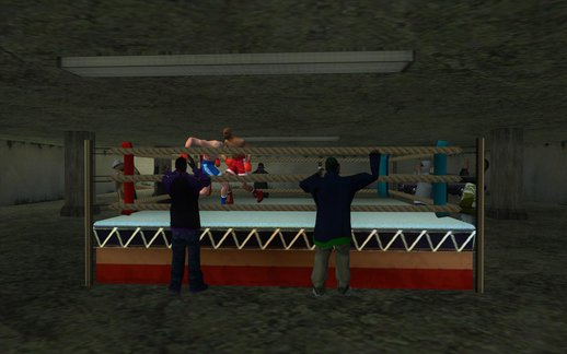 Illegal Boxing Tournament 1.0