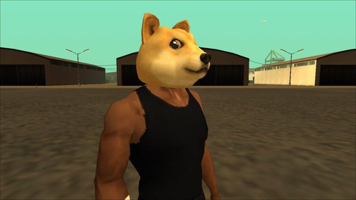 Doge Mask For Cj