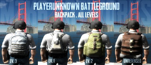 Playerunknown's Battleground Backpack (All levels)