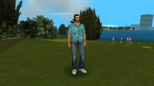 GTA: Vice City - San Andreas Animations (v1.0)