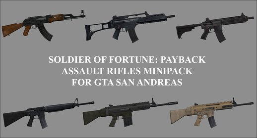 Soldier of Fortune: Payback Assault Rifles Minipack