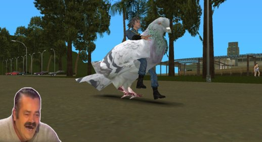 Pigeon of GTA 4