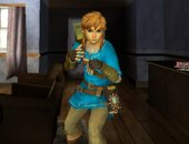 Link Hyrule Warriors (BOTW)