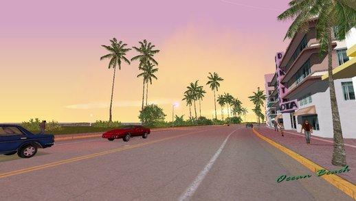 新的棕榈树和天空