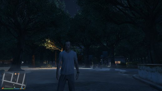 Sandy Shores Trees