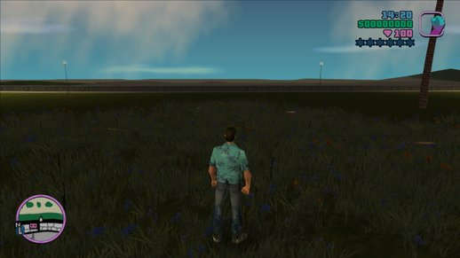3D Grass for GTA Vice City now with MipMapping