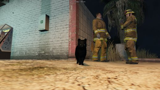 Black House Cat Mod